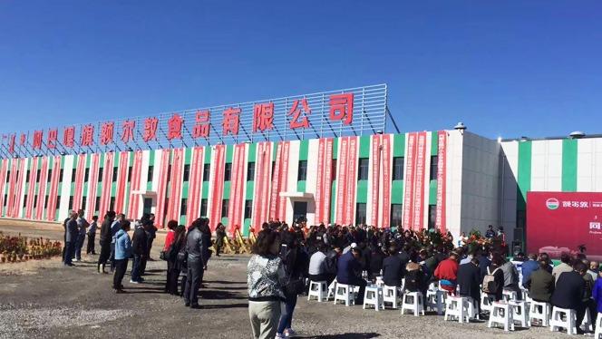 青岛建华接下额尔敦公司班产100头牛,3000只羊的屠宰流水线