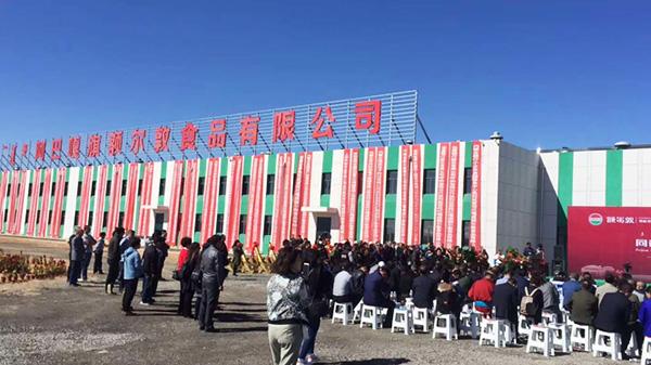 青岛简化接下额尔敦公司班产100头牛,3000只羊的屠宰流水线