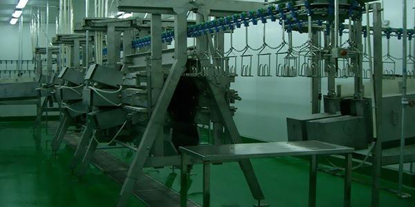 屠宰机械设备的未来发展情况